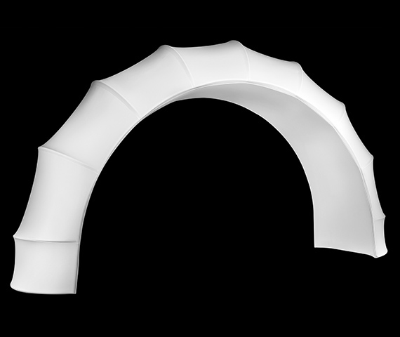 Ribbed Arch Image